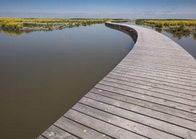 The new created nature-island Markerwadden in the lake Markermeer